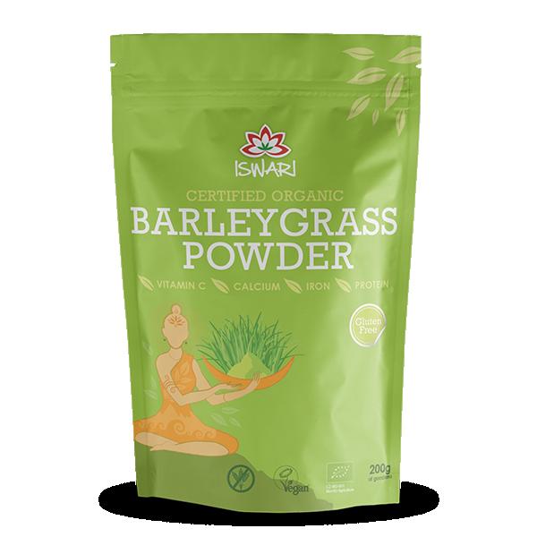 Barleygrass 1