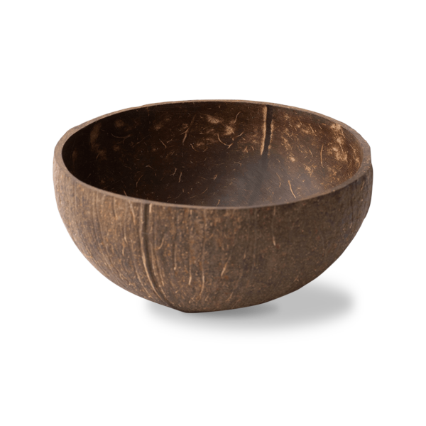 Coconut Bowl 1