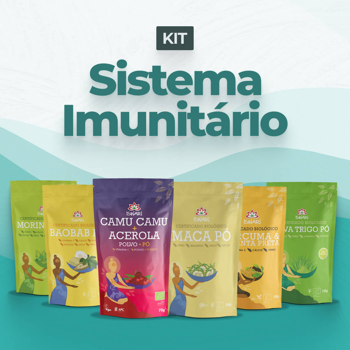 Kit Sistema Imunitário 1