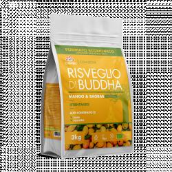 Risveglio Di Buddha Mango e Baobab 6