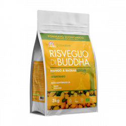 Risveglio Di Buddha Mango e Baobab 4